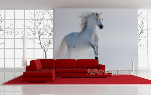 White Horse on the Snow - Animals Wall Murals & Posters