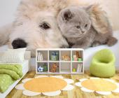 Animals Wall Murals & Posters - Every pet needs a good home! Our animal-themed wall murals with pets are endearing and will fit any room. Add to your bedroom decor a wallpaper featur...