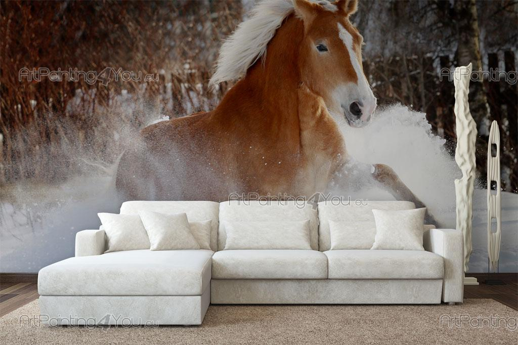 papier peint poster cheval mca1034fr. Black Bedroom Furniture Sets. Home Design Ideas