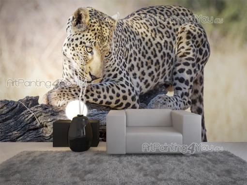 Leopard - Animals Wall Murals & Posters