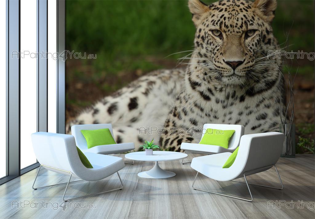 papier peint animaux poster impression sur toile l opard 2744fr. Black Bedroom Furniture Sets. Home Design Ideas