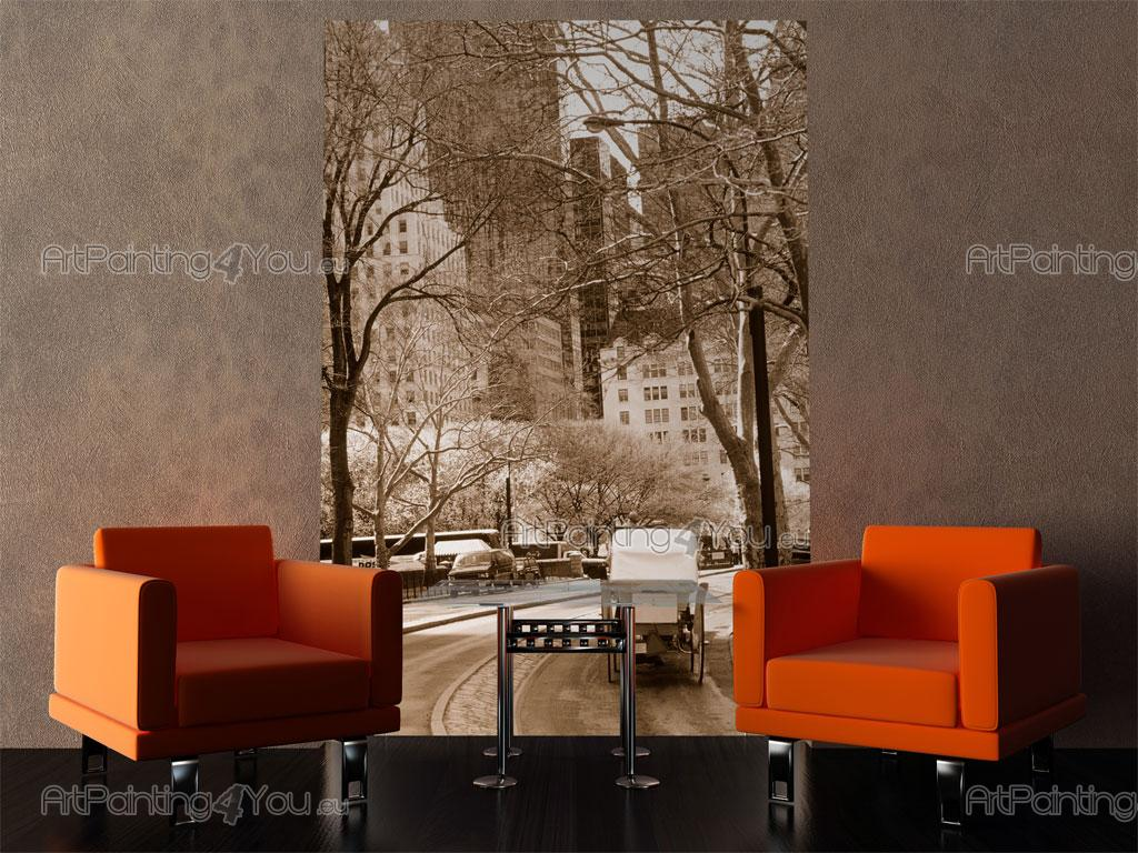 Wall murals posters central park nyc artpainting4you for Central park mural