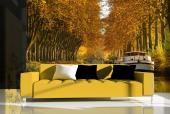 Canal du Midi France - Wall Murals Cities & Posters