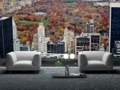 Central Park Panoramic View - Wall Murals Cities & Posters