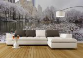 Central Park New York City - Black and White Wall Murals & Posters