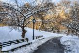 Wall Murals Cities & Posters - Wall murals for interior decoration with landscape of Central Park in the stunning New York city