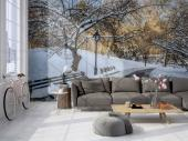 Wall murals for interior decoration with landscape of Central Park in the stunning New York city