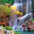 Tropical Forest - Wall Murals Waterfalls & Posters