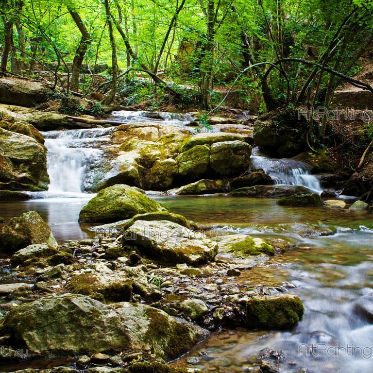 Beautiful Nature Image: Murais De Parede, Telas E Posters Personalizados Floresta