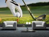 Golf Club - Sport Wall Murals & Posters