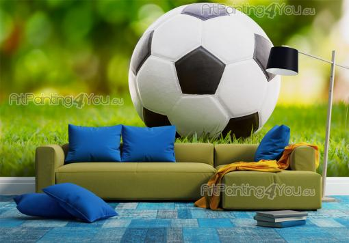 Football Ball - Sport Wall Murals & Posters