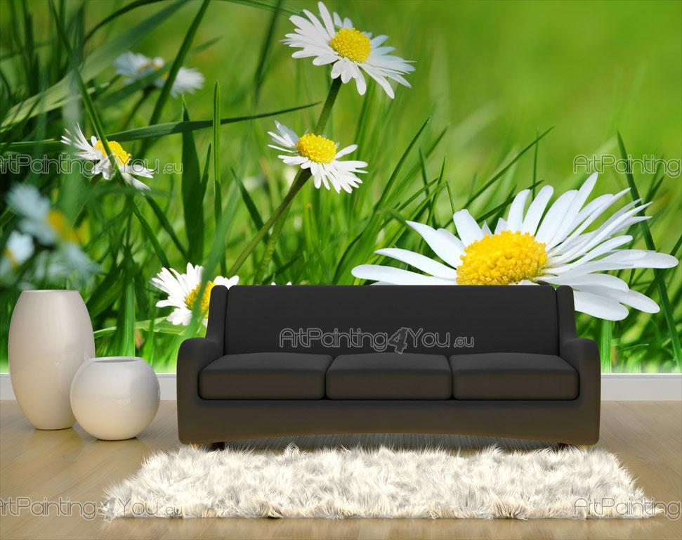 Fotobehang Keuken Design : Fotobehang Bloemen, Canvas Printen & Posters Madeliefje Bloem (753nl)