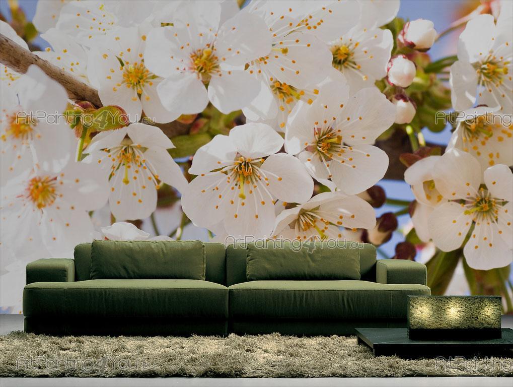 Carta Da Parati Fiori Di Ciliegio : Carta da parati poster fiori di ciliegio artpainting you eu