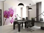 Orchids - Wall Murals Flowers & Posters