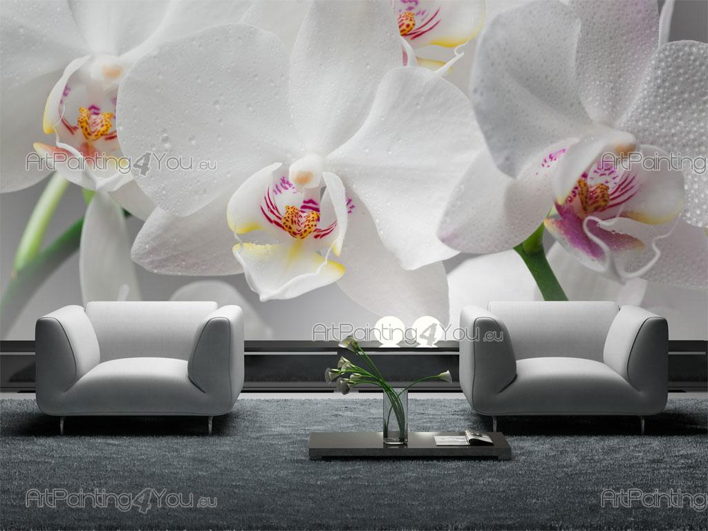 white orchids wall murals posters mcf1044en artpainting4you eu white orchids wall murals flowers posters