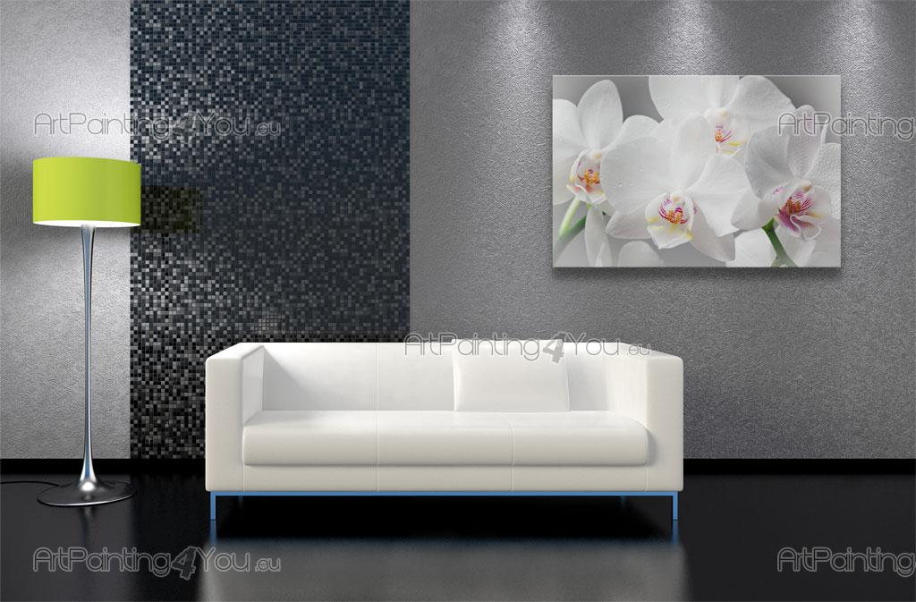 Wall murals posters white orchids for Poster mural zen deco