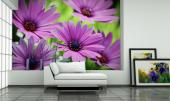 Purple Flowers - Wall Murals Flowers & Posters