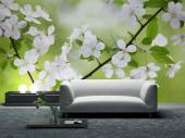 White Flowers - Wall Murals Flowers & Posters