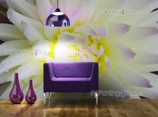 White Dahlia - Wall Murals Flowers & Posters