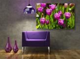 Purple Tulips - Wall Murals Flowers & Posters