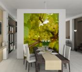 Green Grapes - Food and Drink Wall Murals & Posters