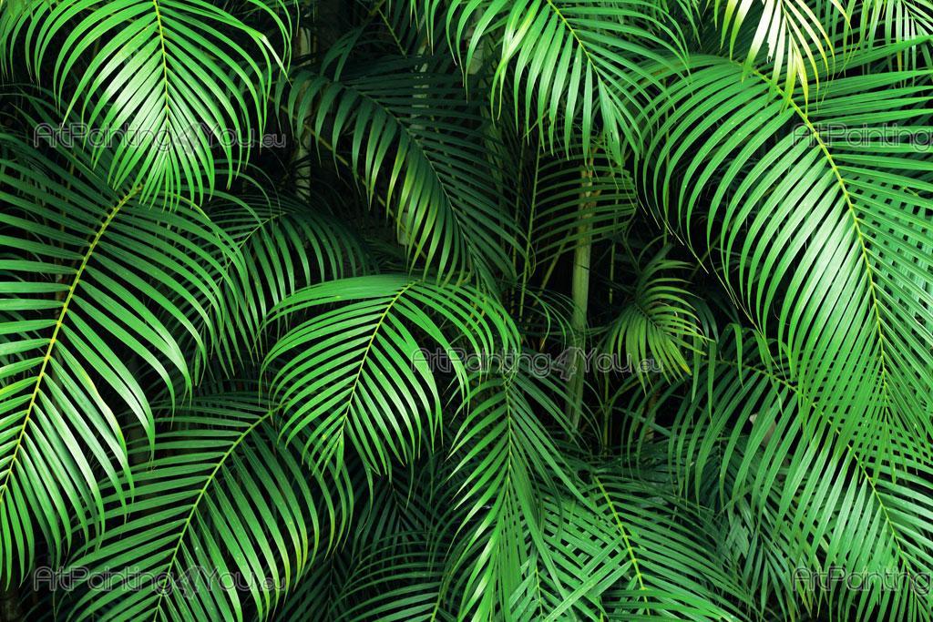 Palm Tree   Wall Murals U0026 Posters Part 91