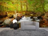 Autumn Waterfall - Wall Murals Nature Landscape & Posters