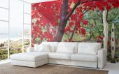 Red Leaves - Wall Murals & Posters
