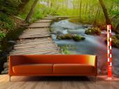 Forest - Wall Murals Nature Landscape & Posters