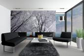 Snow Landscape - Wall Murals & Posters