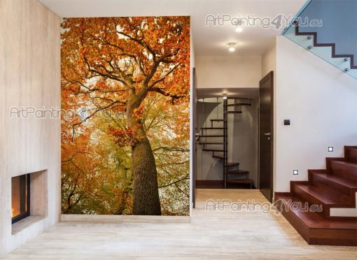 Autumn Trees - Wall Murals & Posters