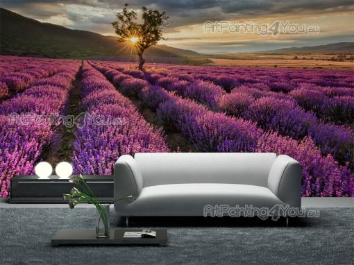 Lavender Flowers - Wall Murals Nature Landscape & Posters