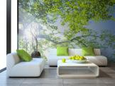 Tree Spring Day - Let the sunshine in! Decorate a living room or bedroom with a wall mural inspired by the fresh beauty of Spring. This wallpaper shows the Sun trying to break through a tree's bright green leafage with a blue, cloudless sky as a background.