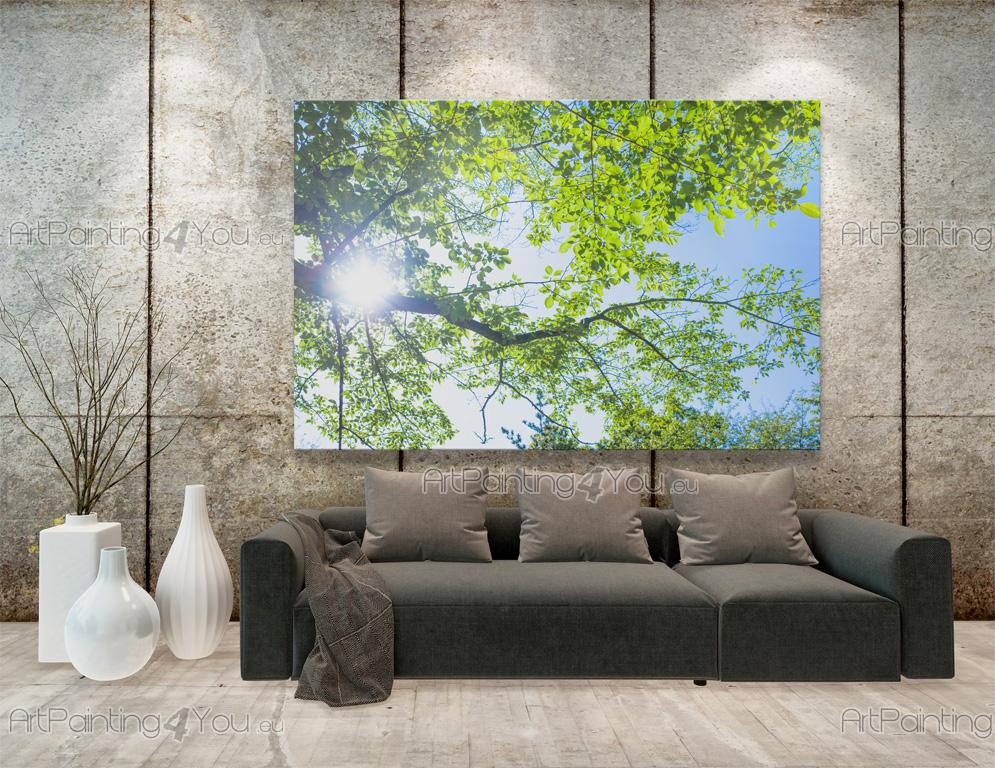 papier peint poster arbres printemps mcp1189fr. Black Bedroom Furniture Sets. Home Design Ideas