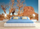 Monument Valley Arizona - Wall Murals & Posters