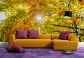 Wall Murals & Posters - Wall mural on the theme of nature. If you love the many colours of Autumn leafage, add to the decoration of your bedroom or living room a custom-sized...