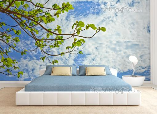 Sky Clouds - Wall Murals & Posters