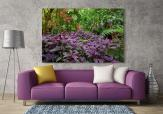 Tropical Forest - Wall Murals Nature Landscape & Posters