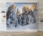 Snow Winter - Wall Murals Nature Landscape & Posters