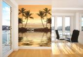 Palm Tree - Sunset Wall Murals & Posters