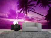 Tropical Beach - Sunset Wall Murals & Posters