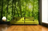 Bamboo Forest - Tropical Beach Wall Murals & Posters