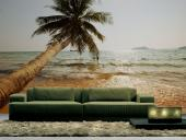 Exotic Island - Tropical Beach Wall Murals & Posters