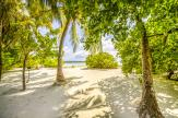 Tropical Beach Wall Murals & Posters - Travel directly to your most desired holiday destination without leaving the living room. Apply on a wall this mural or canvas featuring a tropical la...