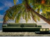 Seychelles Islands - Tropical Beach Wall Murals & Posters