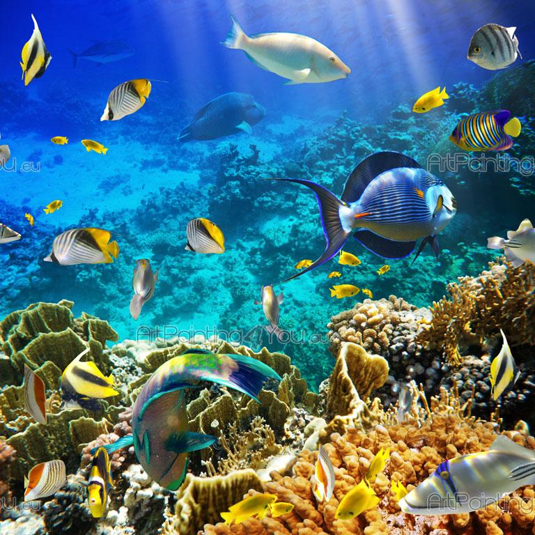 Sealife   Underwater Wall Murals U0026 Posters Part 34