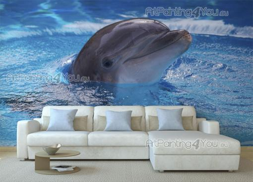 Dolphin - Underwater Wall Murals & Posters