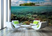 Tropical Sea Life - Underwater Wall Murals & Posters