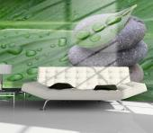 Fresh Leaves - Zen and Spa Wall Murals & Posters