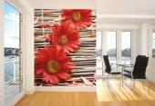 Red Gerbera & Bamboo - Wall Murals Flowers & Posters